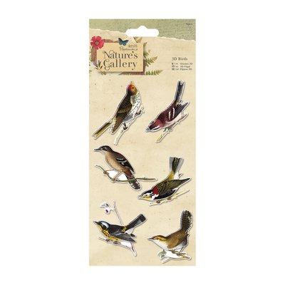3D Birds - Nature's Gallery