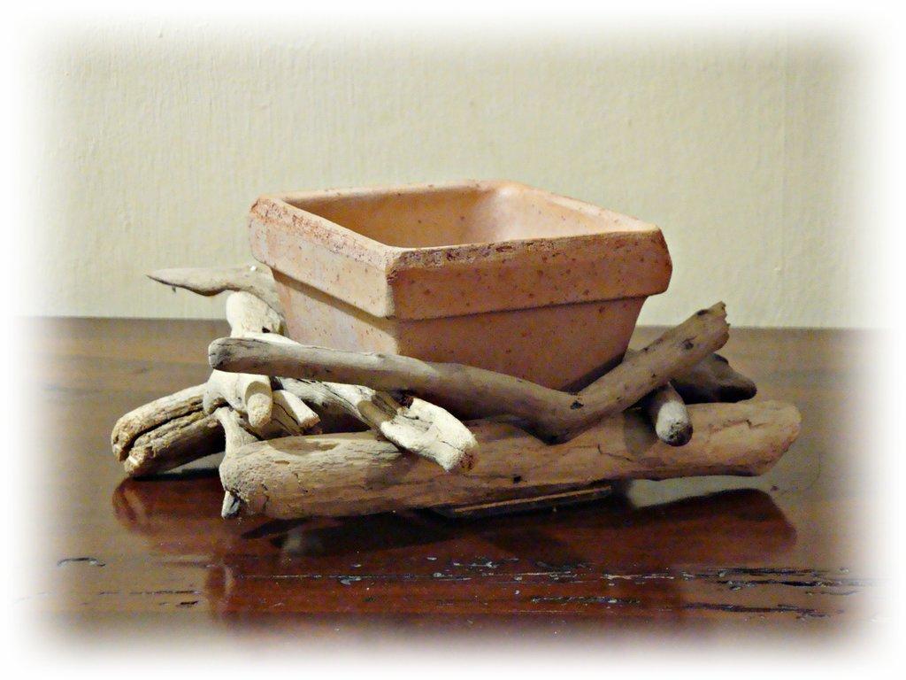 Vasetto in terracotta e legni di mare