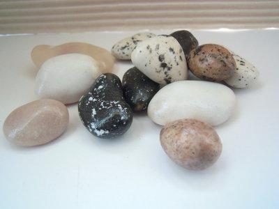 confetti Pietre di albicocca cioccolato e marzapane