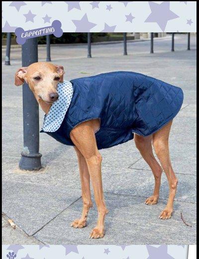 cappottino trapuntato cane