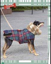 cappottino scozzese cane