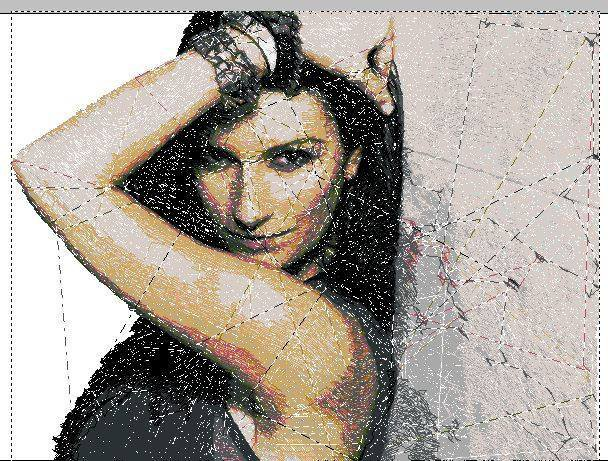 Cover Cd Laura Pausini ricamata