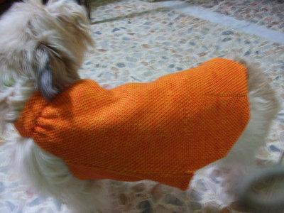cappottino x cani maglia