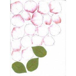 Rosa bianca screziata di rosa - Forme Tessili 3D