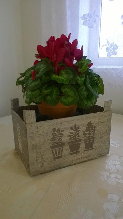 Cassetta In Legno Decorata In Stile Shabby Per La Casa E Per Te