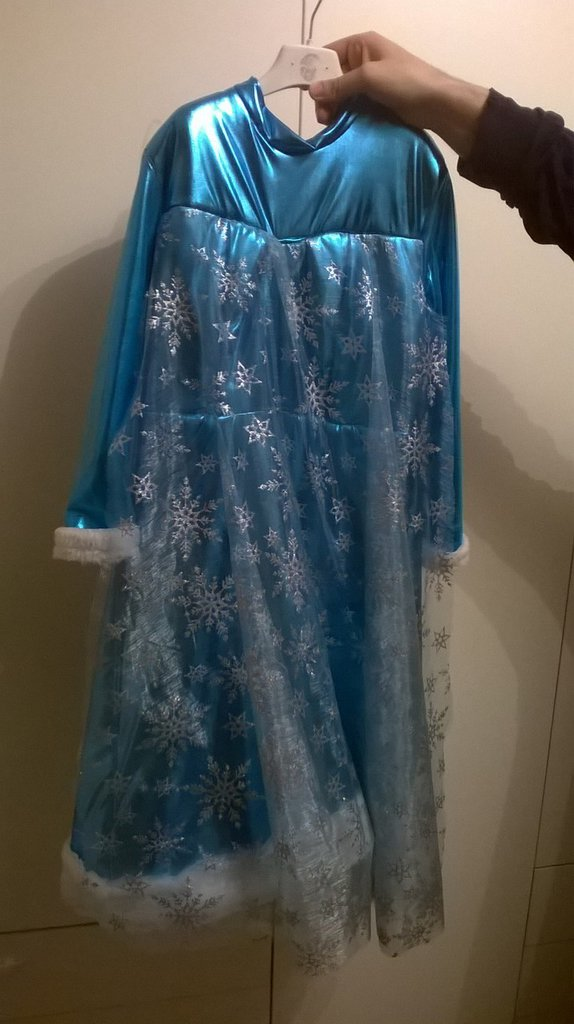 esempio vestito di carnevale frozen