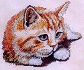 Cuddles - Schema Punto Croce Gattino Rosso - Character Creations
