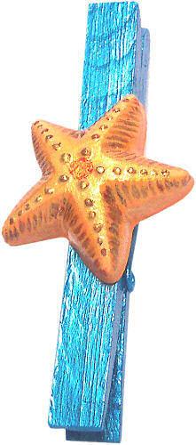 Fermacarta Stella marina