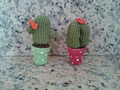 Piantina grassa Cactus a uncinetto