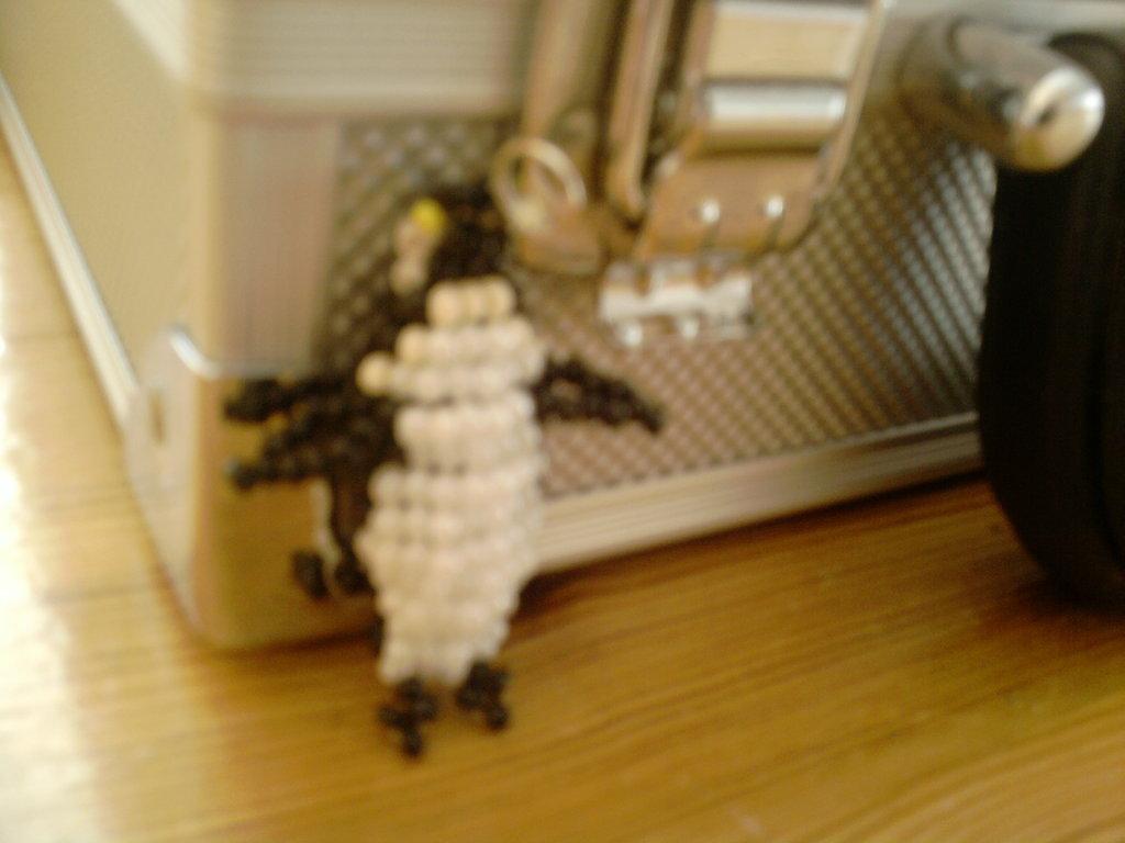 Pingüino / Penguin