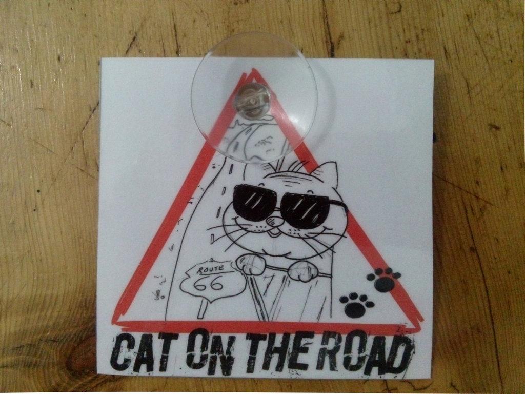 targhetta per auto-cat on the road