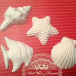 Gessetti profumati 12 pezzi misti   forme marine,conchiglie ,stella marina