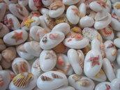 50 confetti per Confettata a tema mare