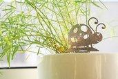 COCCINELLA BABY 3D - Decorazione d'arredo d'esterni e d'interni
