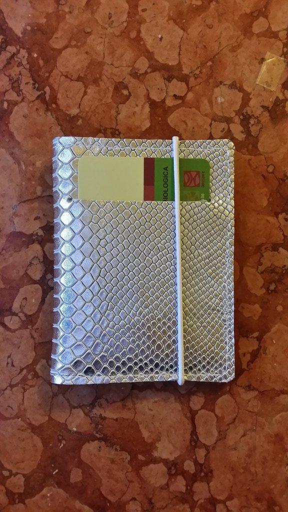 Mini portafoglio da borsetta,vera pelle stampa pitone argento