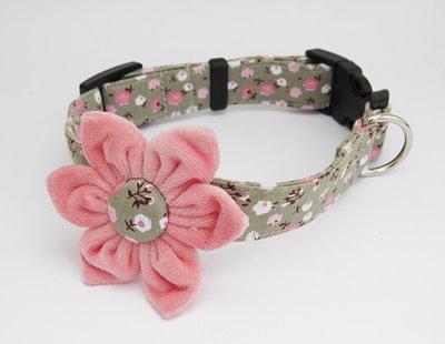 Collare cane con fiore in veluto