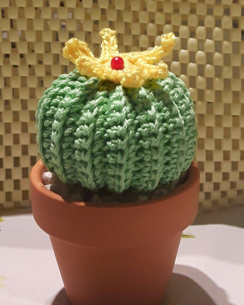 Cactus fiorito all' uncinetto