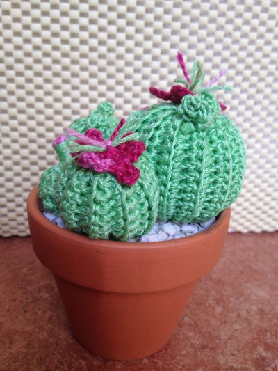 40 Best cactus's images   Crochet cactus, Cactus, Crochet plant   533x400