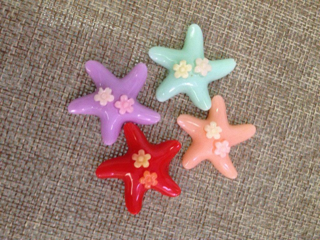 6 stelle marine in resina