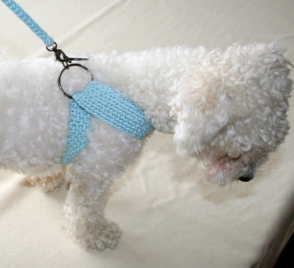 BubaDog Pettorina ergonomicha con guinzaglio a crochet uncinetto, Imbragatura per piccoli cani di puro cotone