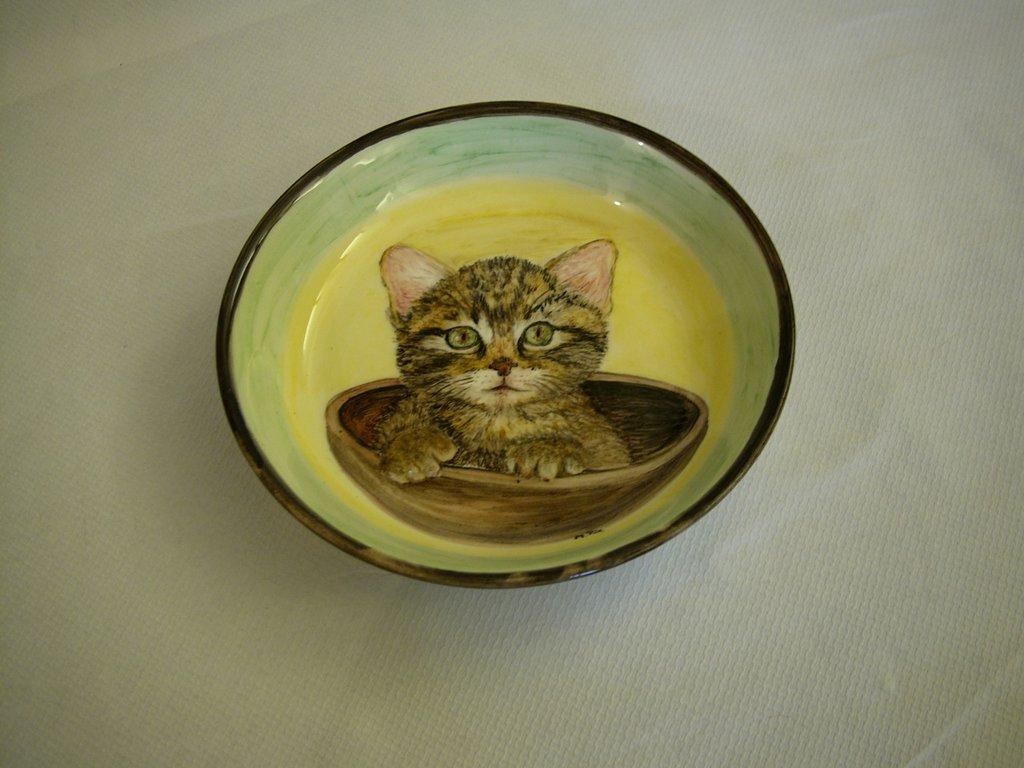 Piatto ciotola gattino