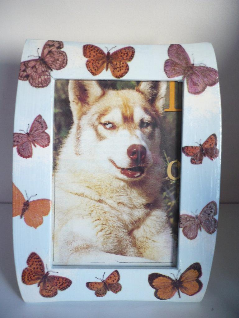 cornice portafoto con farfalle
