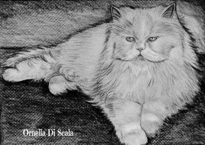 Ritratto su commissione gatto e cane matita