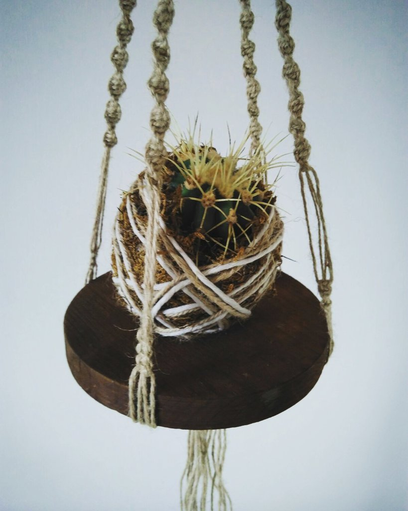 KOKEDAMA, piccoli bonsai volanti, installazioni floreali.