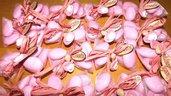 OFFERTA PROMOZIONALE FIMO - BOMBONIERE COMPLETE - CIUCCIO ROSA BIMBA   - con sacchettino confetti e in OMAGGIO targa con nome