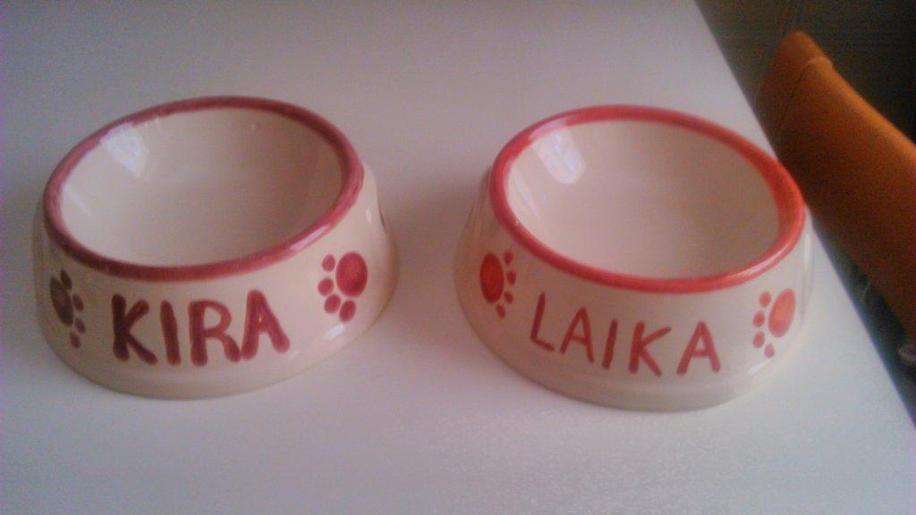 ciotole gatto ceramica