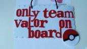 """targhetta auto """"Team"""""""
