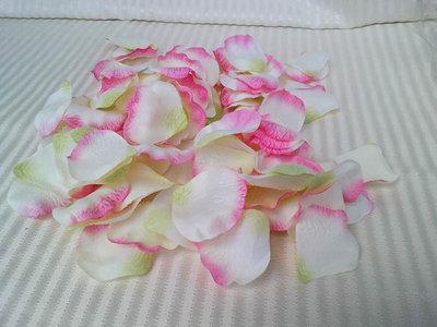 Petali di rose sfumati
