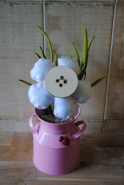margherita in vaso rosa