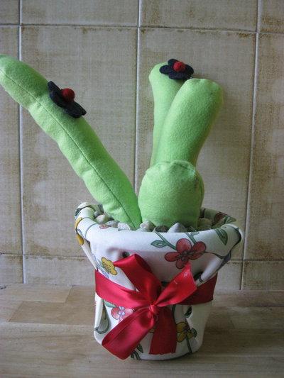 cactus con fiore e fiocco rosso