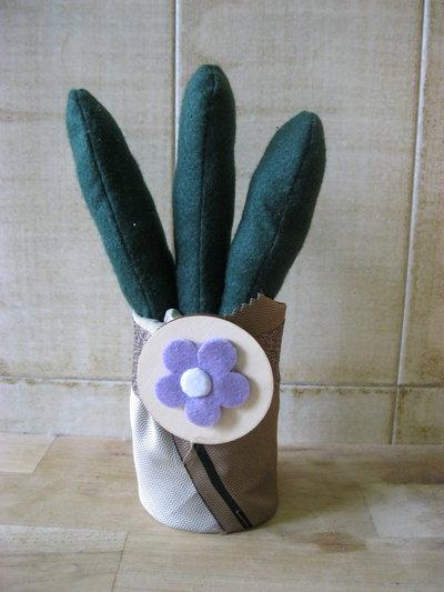 cactus piccolo 3