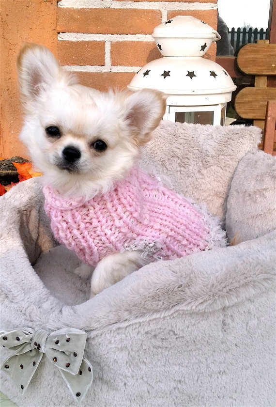 Taglia XXS Elegante cappotto per chihuahua romantico maglione per chihuahua per cuccioli, chihuahua e piccoli cani Maglione rosa per Chihuahua fatto a mano