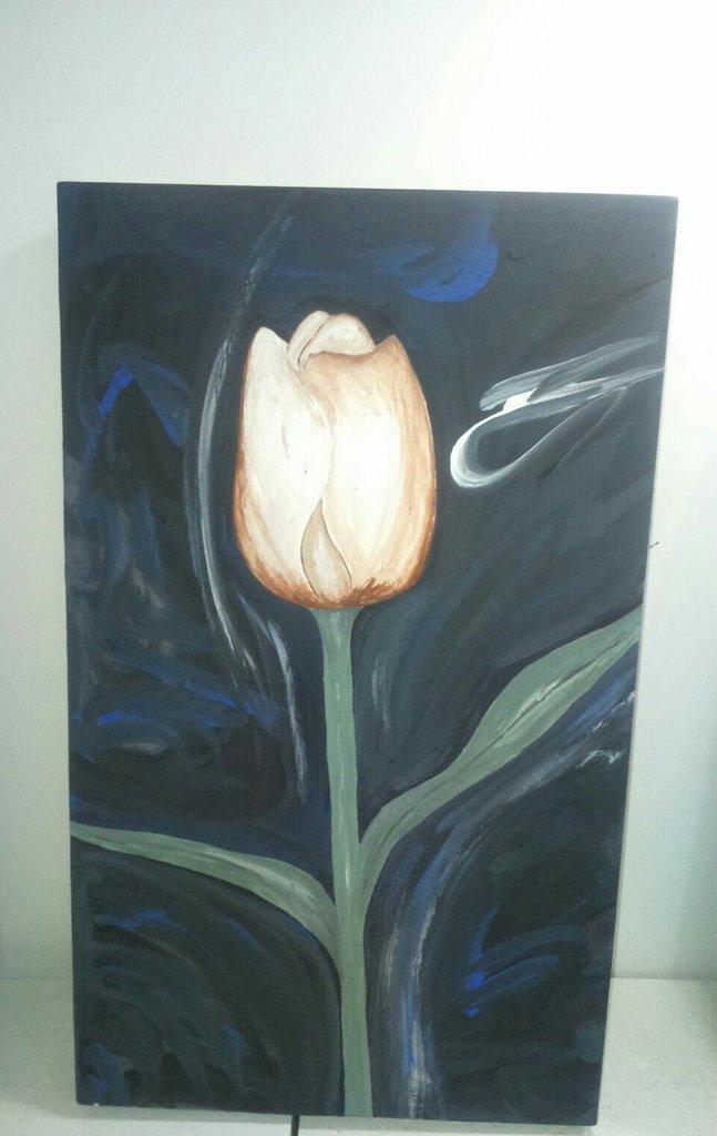 Tulipano nella notte