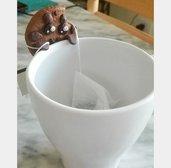Biscotto porta bustina di tè