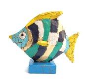 Il Pesce colorato