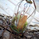 microterrarium quartz con cristallo ialino