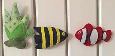 Calamite per frigorifero, pesci tropicali e alga verde chiaro