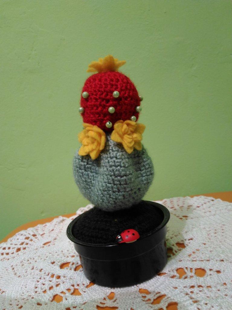 Cactus pianta uncinetto lana
