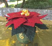 Natale - vasetto con stella di natale