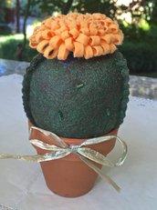 Cactus in feltro con fiore color pesca