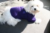 BubaDog Maglioncino cane purpureo fatto a mano, Cappottino per cani all'uncinetto