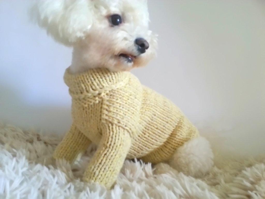 BubaDog Maglione per cani nel colore giallo pastello fatto a mano