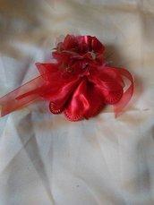 confettate rosse laurea