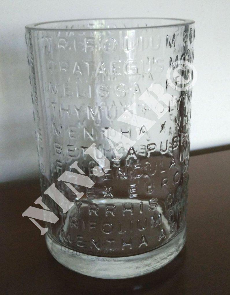 Vaso da arredo artiginale da Bottiglia Gin The Botanist Riciclo Creativo Riuso Arreddo Idea Regalo