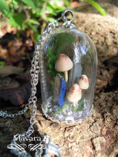 microterrarium con funghi di bosco e ttanium quartz