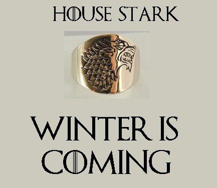 Anello Casa Stark in bronzo con Motto della casa all'interno